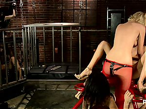 strap-on domme tests her new gimps